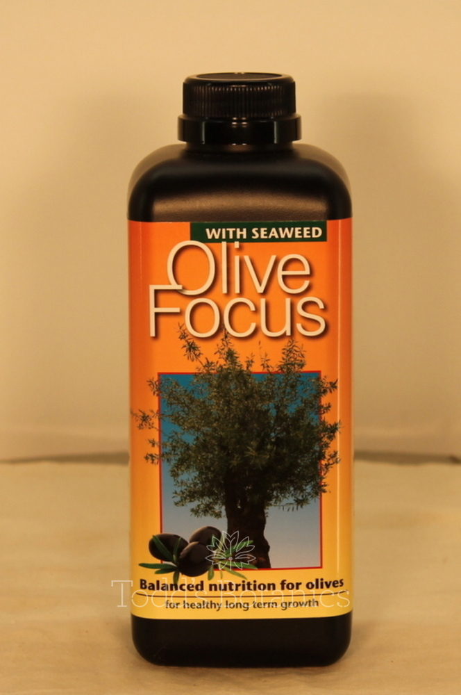 Olive Fertiliser - Olive Tree Feed