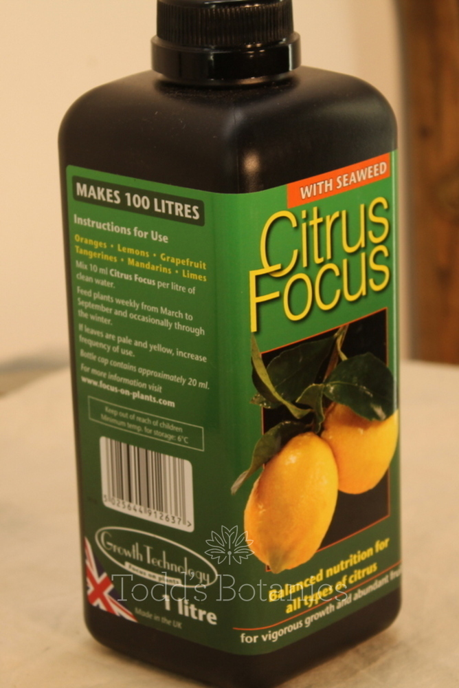 Citrus Fertiliser - Year round feed